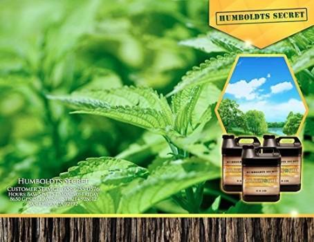 1-meilleur-Plant-Food-Humboldts-magique-secrte-Golden-Tree-acclrateur-de-croissance-Yield-Increaser-sauveteur-de-la-plante-malade-100-organique-All-In-One-en-nutriments-additif-pour-la-culture-hydropo-0
